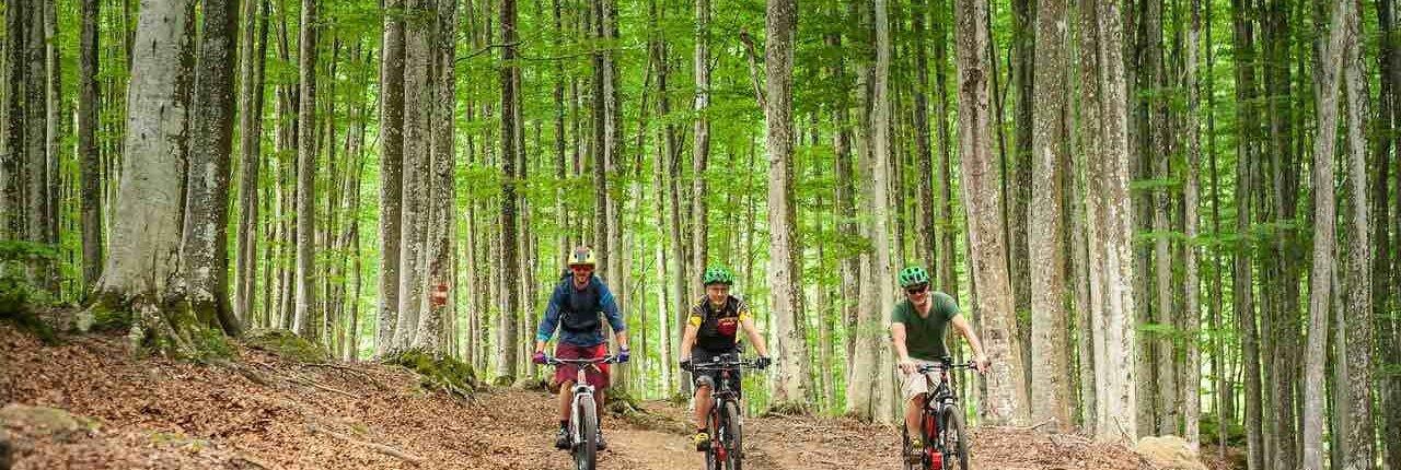 Giro in e-bike monte amiata