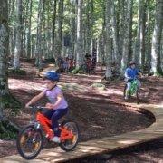 amiata bike resort percorso bambini amiata freeride